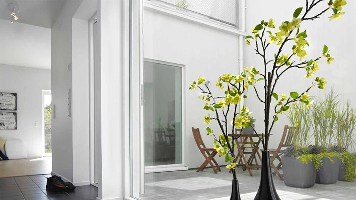 vitmålad lägenhet med växter